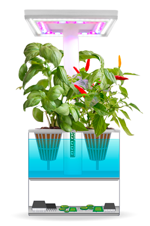 UrbiGo mini smart indoor garden